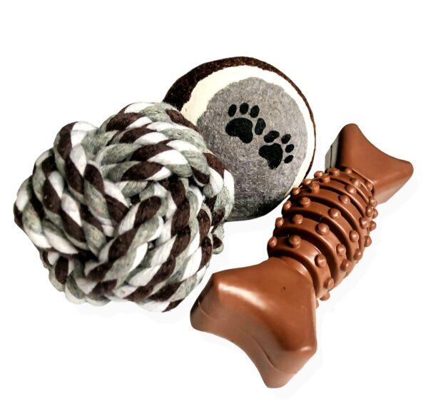 Dog toy play set