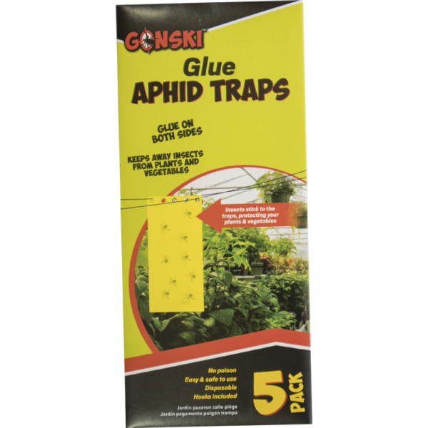 Aphids glue traps pack of 5