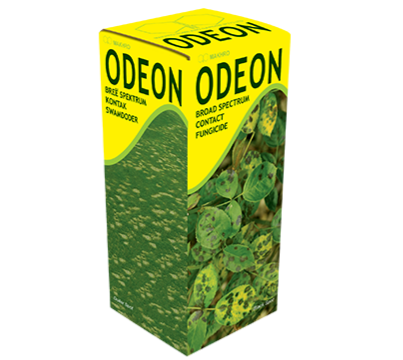 Odeon 100ml