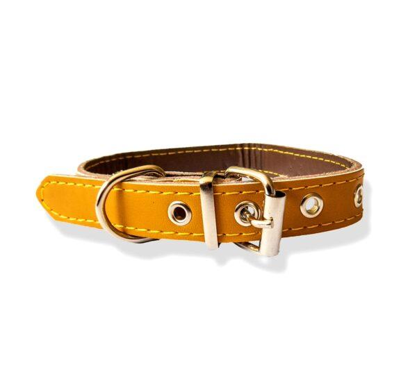 Dog collar leather metal stud